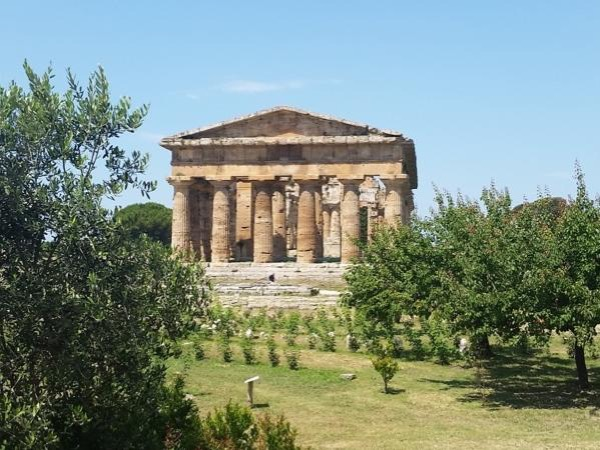 Private Tour to Ancient Paestum and Mozzarella Organic Farm
