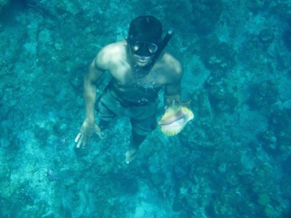 Roatan Private snorkel by boat or beach