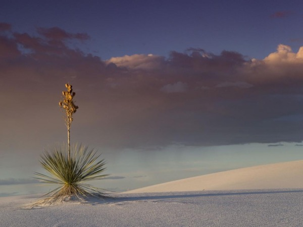 White Sands and Carlsbad Caverns