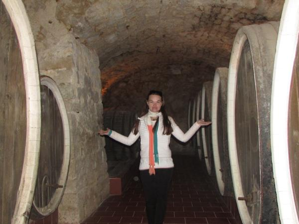 Wine tour with degustation