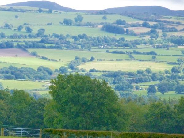 Medieval Denbighshire