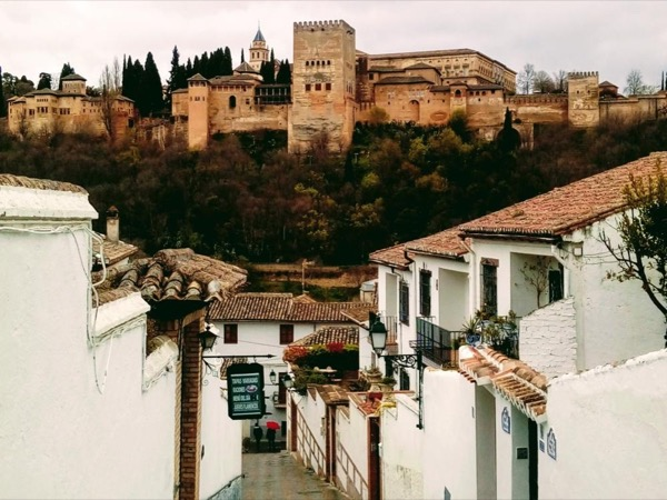 Going to Alhambra? 3 hrs Private Tour!