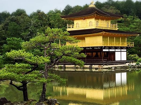 Kyoto Golden Course full day Private Tour