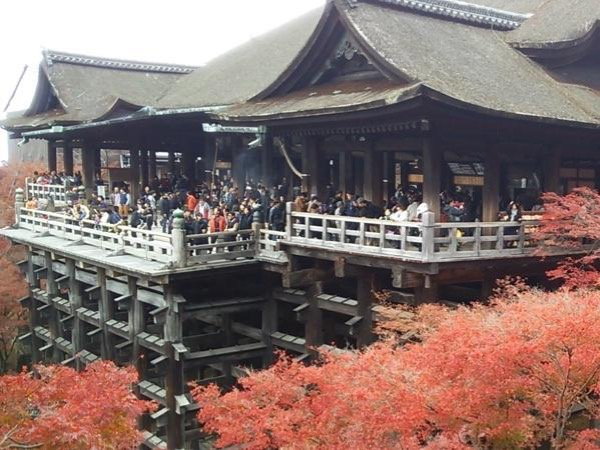 Kyoto Half-day Private Tour