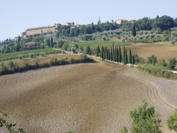 A walk from Pienza to Montepulciano