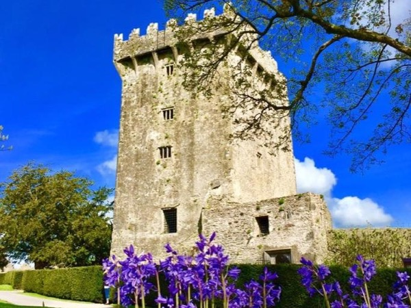 Private Shore Excursion (Blarney-Kinsale-Cobh)