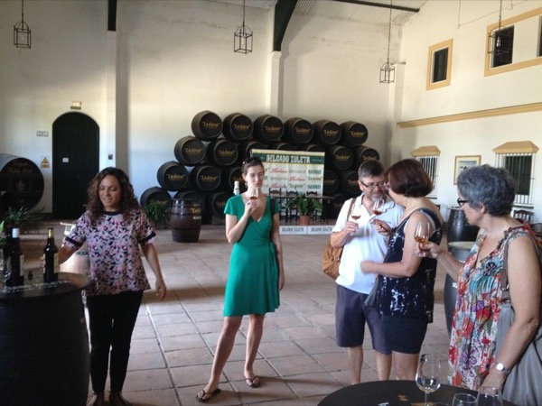 Wine & Sherry Day from Seville - Private Tour