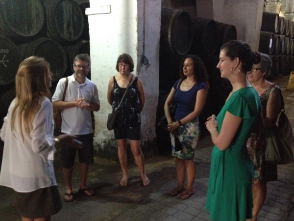 Wine & Sherry Day from Cádiz - Private Tour