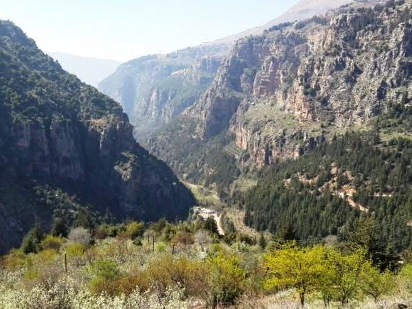 Qadisha Valley, Cedars of God and Baalback