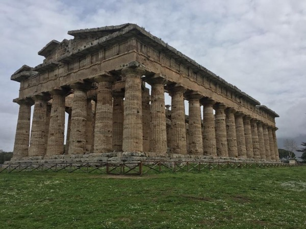 Paestum, the greek temples and a visit to a buffalo mozzarella factory