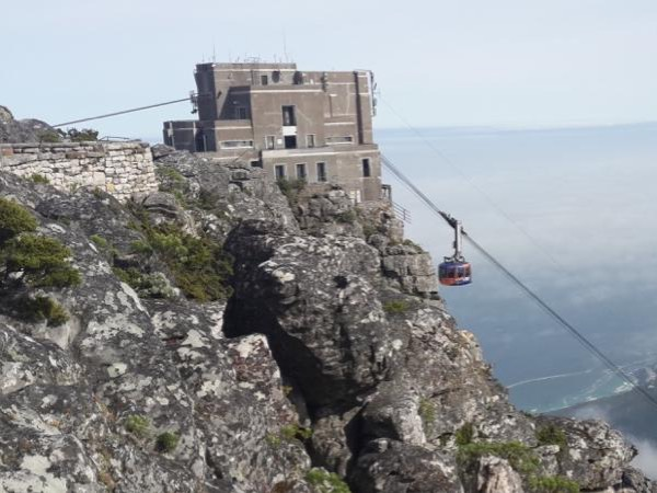Spectacular Table Mountain and Cape Point Private Tour
