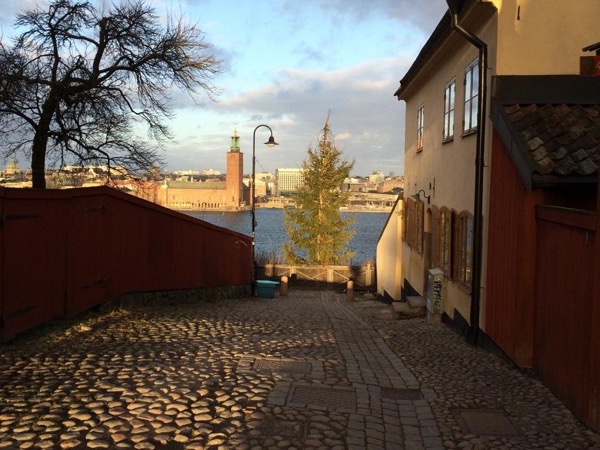 Walking Tour of Stockholm (half day)