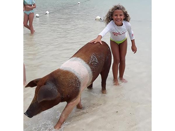 Swimming With The Pigs!!!