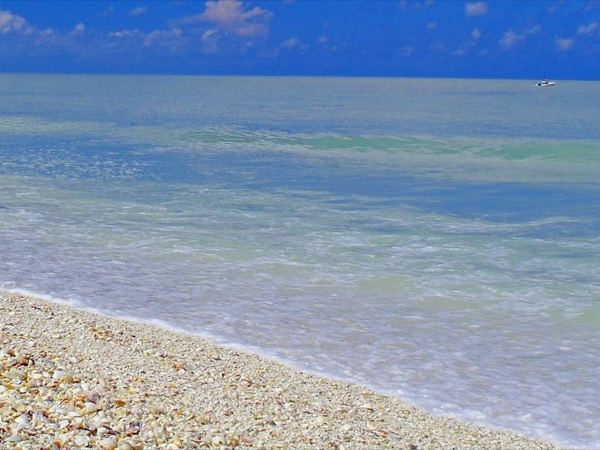 Gulf Coast and Sanibel Island