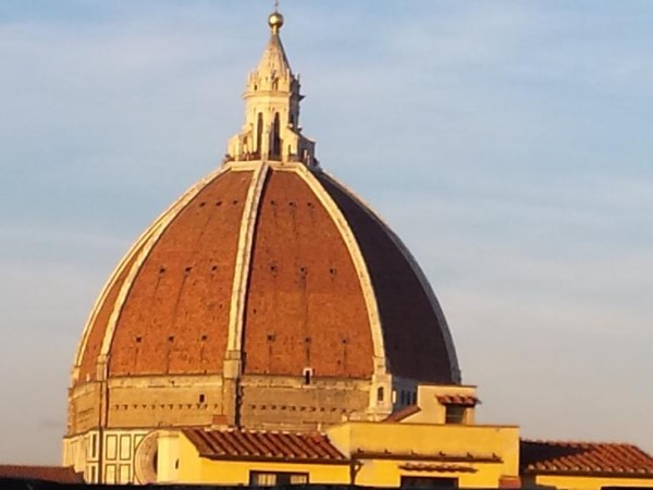 Classical walking tour of Florence with Museums