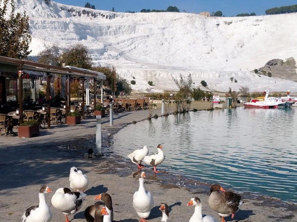 Pamukkale Private Tour from Kusadası town or port (Round Trip-Go and Back in a Day)