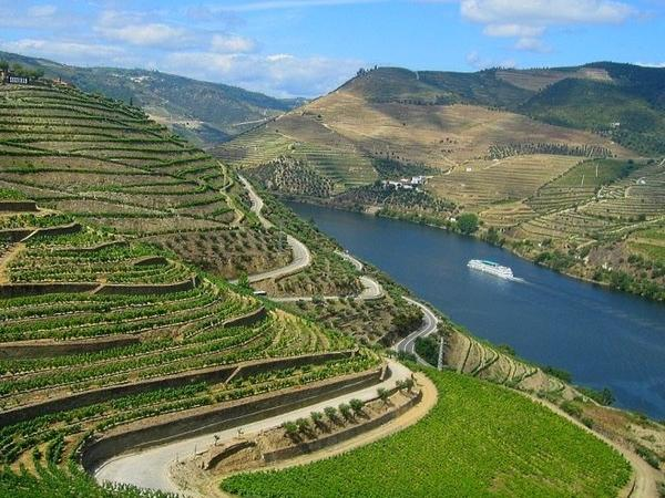 Douro Valley Road Trip Tour