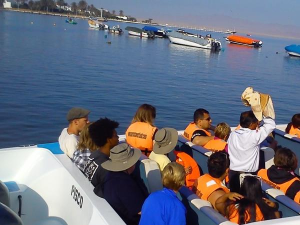Paracas Ballestas Islands Tour