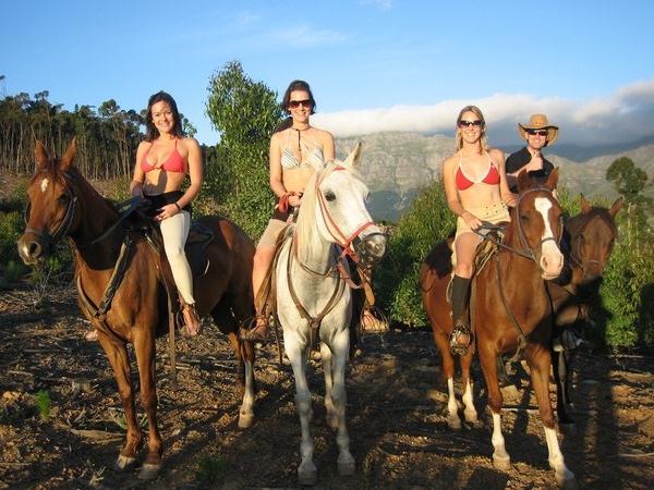 Horseback Of Franschhoek Valley Private Tour