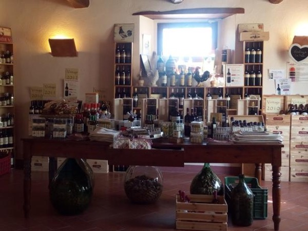 Wine tasting in the Romagna heart!