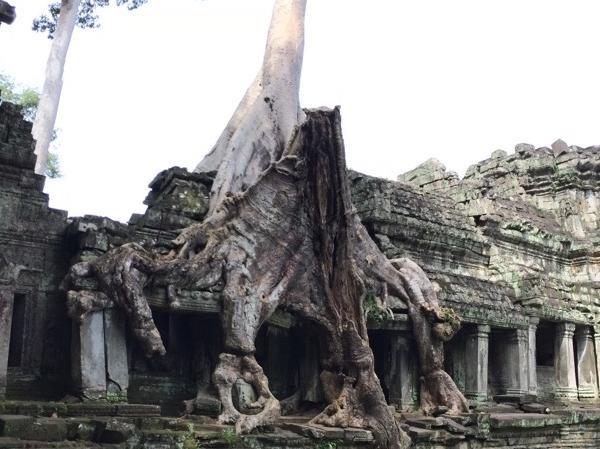 Countryside And Angkor Wat 5 Day Tour