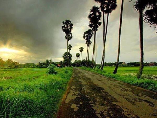 Rural Angkor Wat