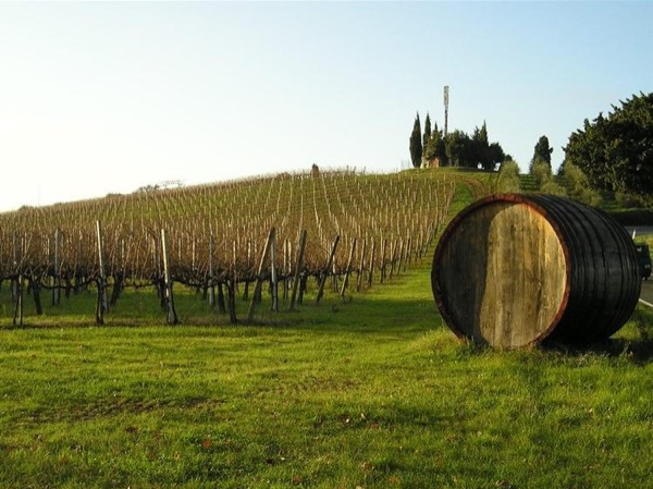 San Gimignano & Chianti wine private tour