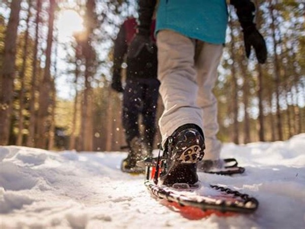 Snowshoeing day trip in Triglav national park