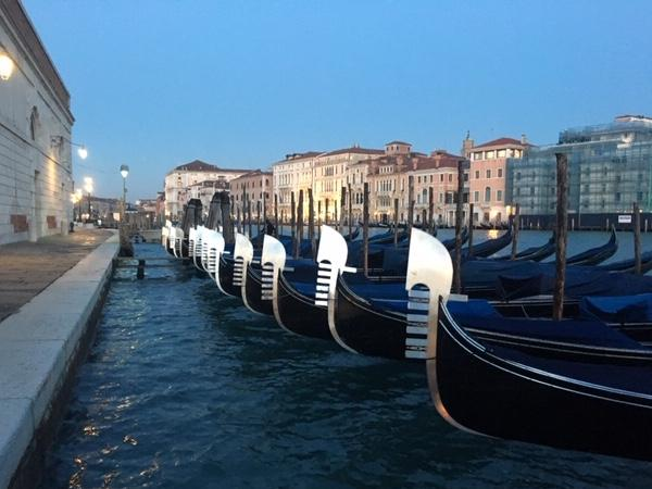 Early birds walking tour of Venice with your private guide!