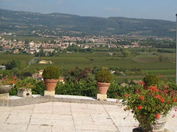 Valpolicella and Amarone Wine Tour