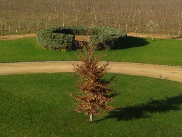 Maipo valley wine tour