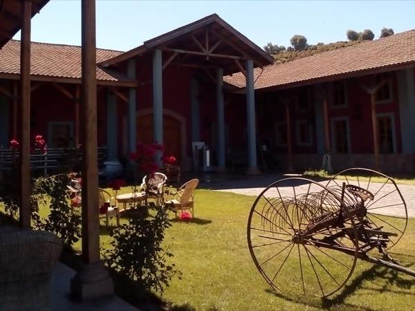 Aconcagua Valley Wine Tour