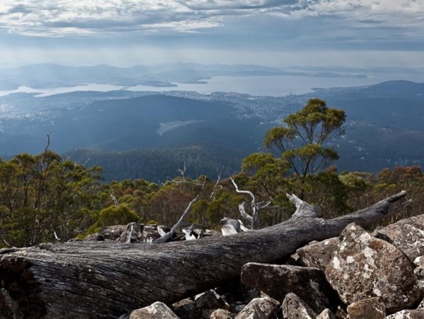 Hobart Highlights - Richmond, Bonorong & Mt Wellington - private tour