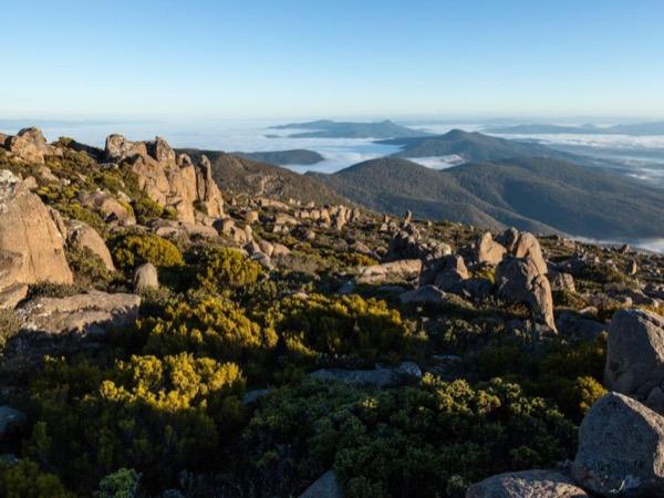 Mt Wellington nature photography tour