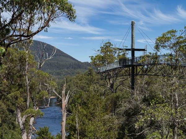 Huon Valley Day Tour, including Tahune Airwalk - Full Day Private Tour