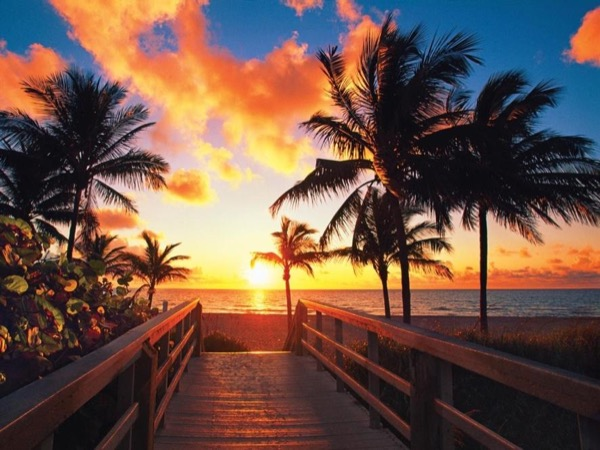 Private Jurney To The Golf Of Mexico, Marco Island, And Naples (Shore Excursion)!